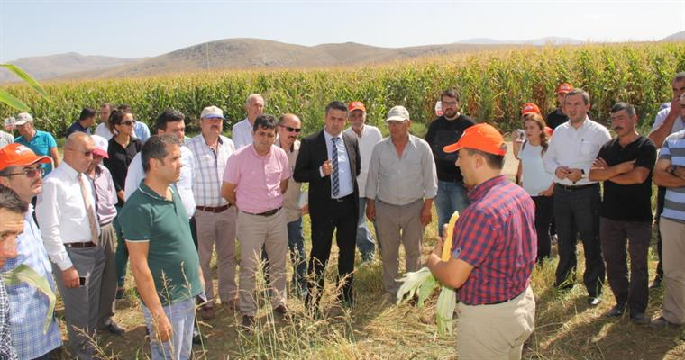 The Field Day Was Organised In The Karamanlı-Hürriyet District In Cooperation With Burdur Directorate Of Provincial Food Agriculture And Livestock Under The Coordination Of BATEM