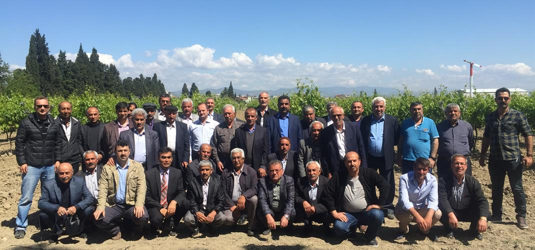 Viticultural Training for the farmers of Besni/Adıyaman